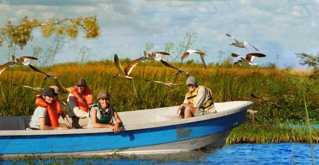 fauna e uccelli argentina