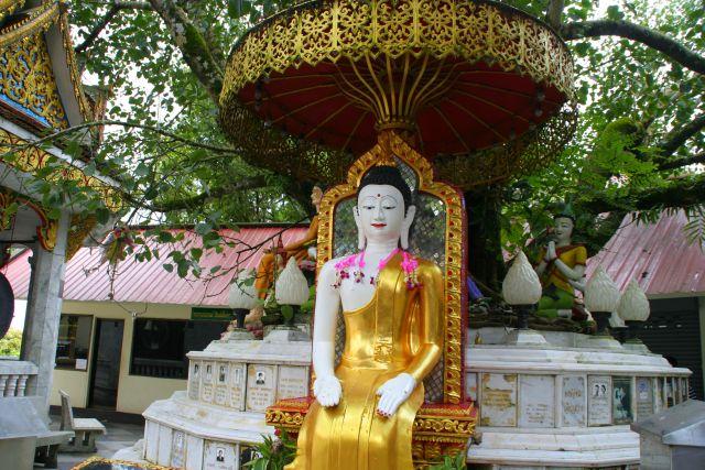 cosa vedere a Chiang Mai templi thailandia