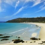 kangaroo island spiagge mare Australia